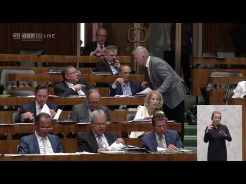 Nationalratssitzung - Johann Hell - SPÖ - 26.04.2017