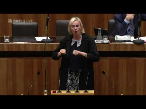 Nationalratssitzung -  Helene Jarmer - Die Grünen - 26.04.2017