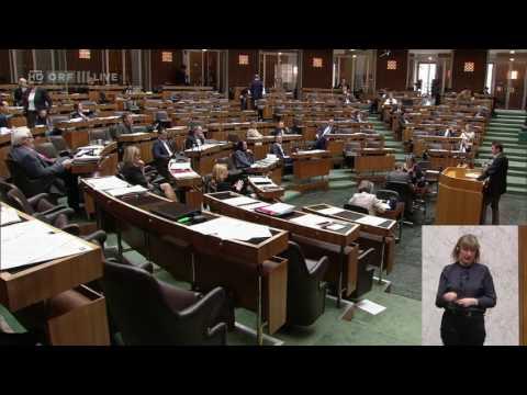 Nationalratssitzung - Albert Steinhauser - Die Grünen - 26.04.2017